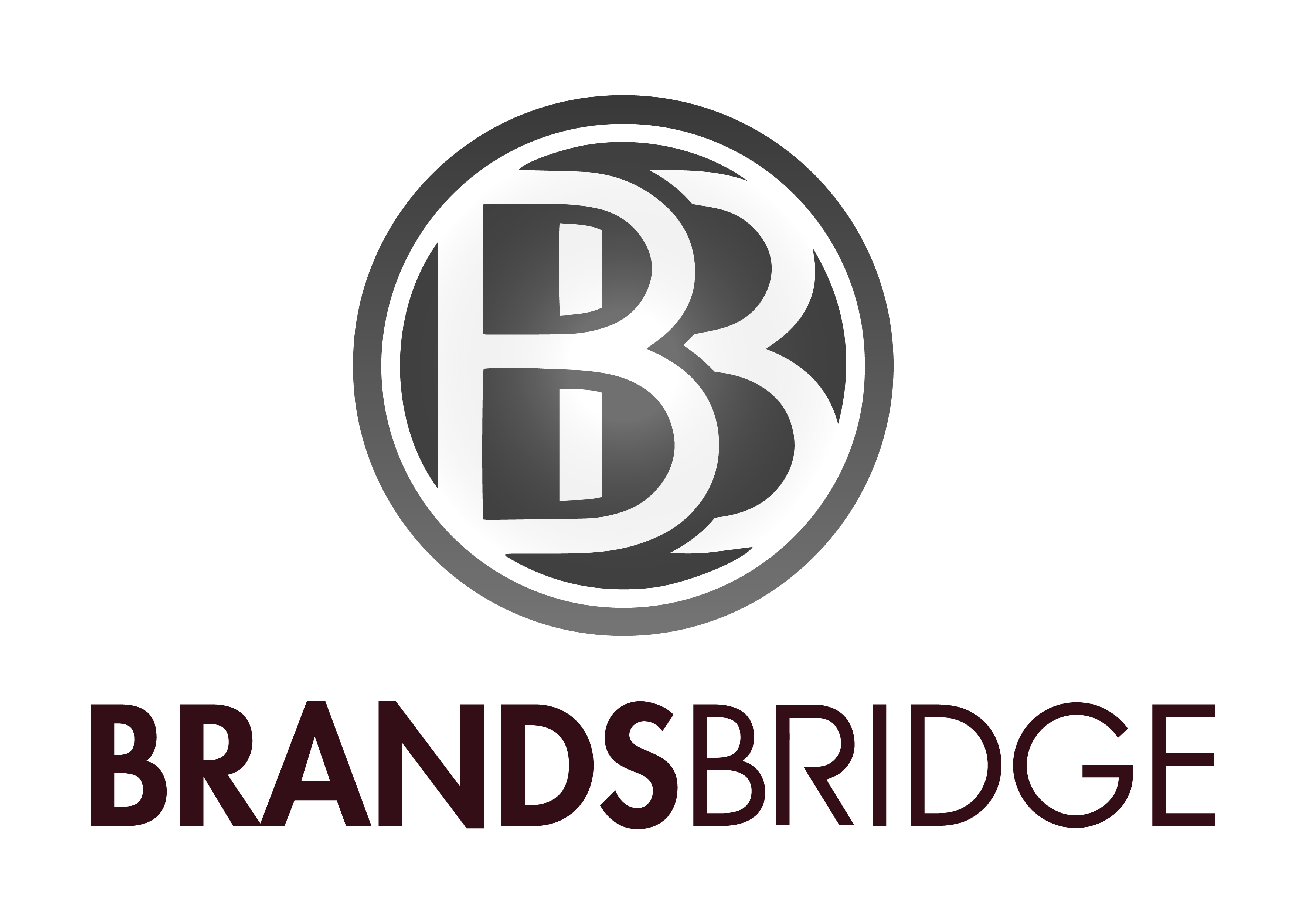 Logo-BrandsBridge-02